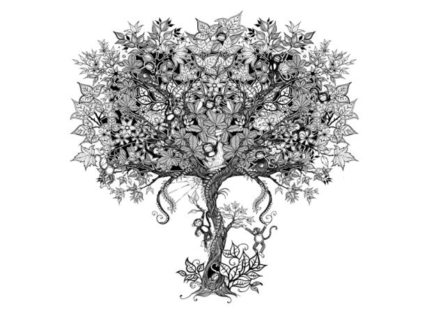 Johanna Basford Monkey Puzzle Illustration